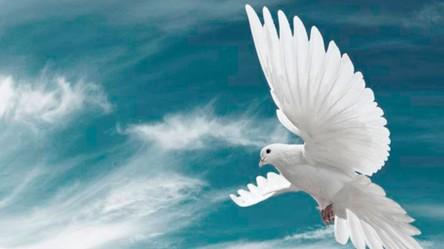 Espírito-Santo-de-Deus-7